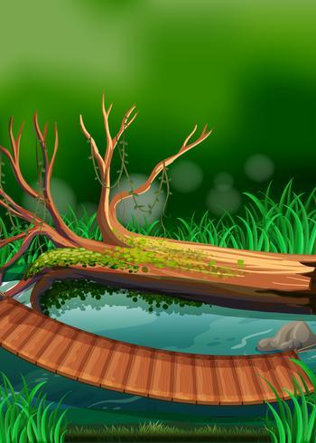 Escena de río con tronco y puente