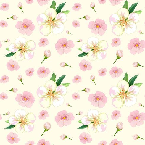 Padrão sem emenda de flor de cerejeira