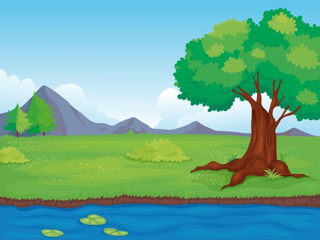 Landsbygdens landskap