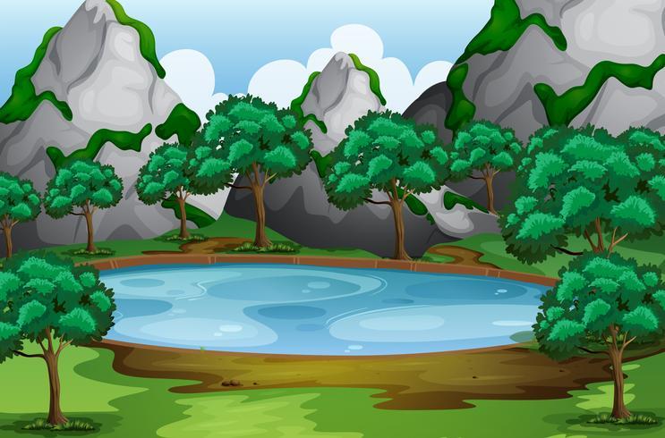 Cena de floresta com árvores ao redor da lagoa