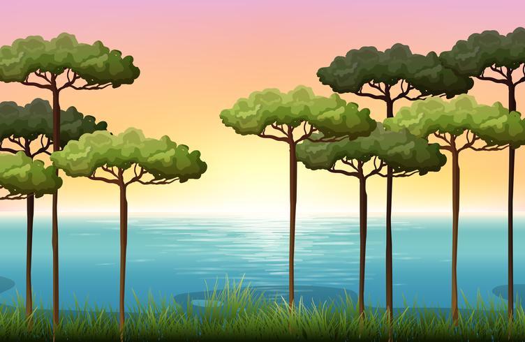 Aardscène met bomen en water