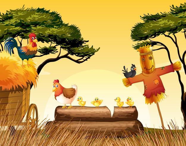 Hühner und Vogelscheuche auf dem Feld