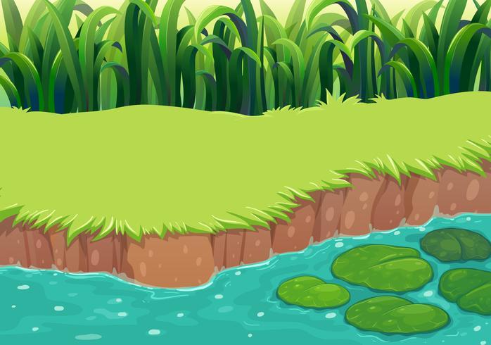 Een afbeelding van een vijver