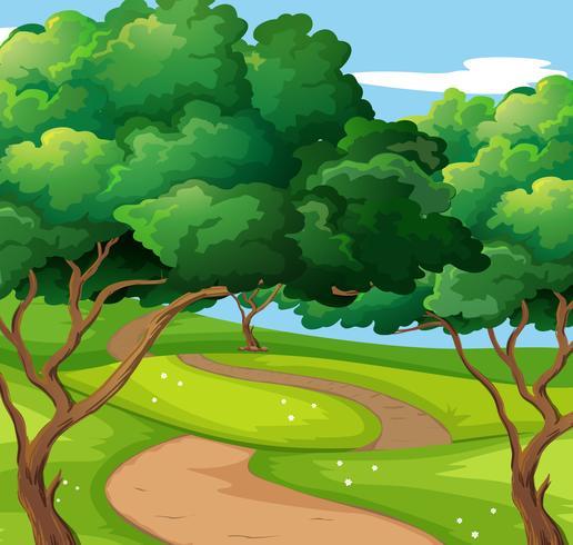 Scène de parc avec sentier et arbres