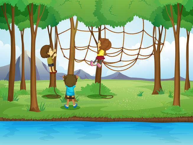 Crianças, corda escalando, em, a, floresta