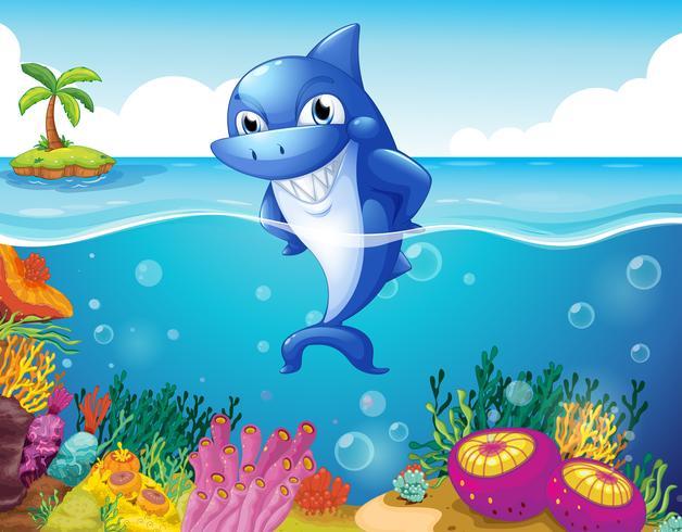 Un tiburón en el fondo del mar sonriendo.