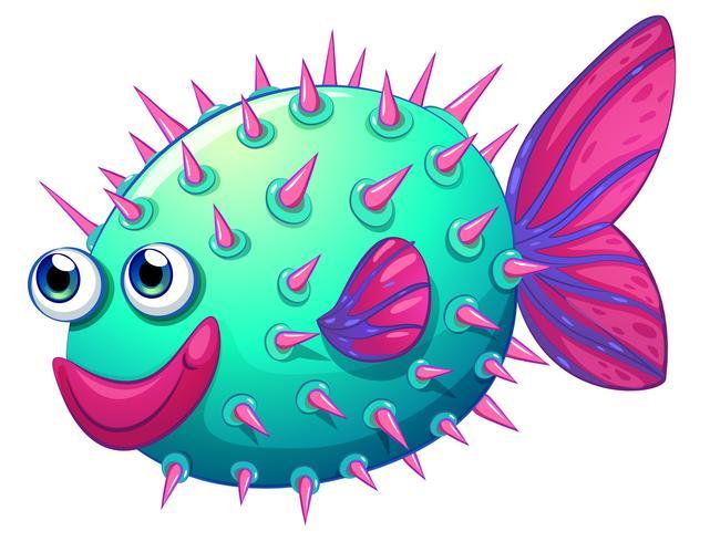 Um peixe bolha colorida