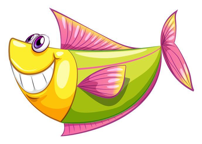 Ein lächelnder bunter Wasserfisch