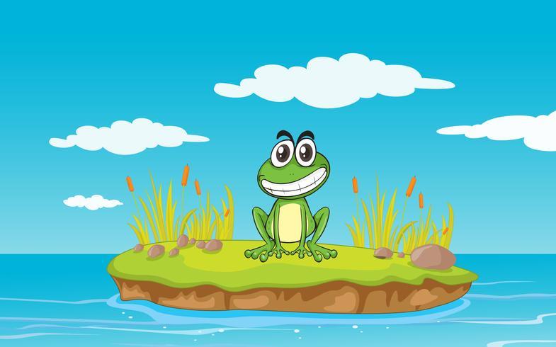 una rana y un agua
