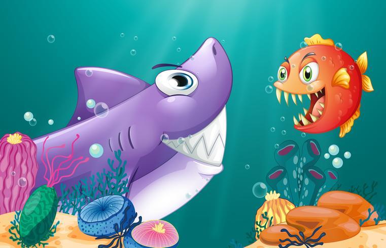 En haj och en piranha under havet