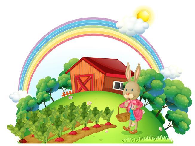 Um coelho com uma cesta no jardim