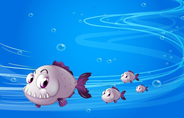 Cuatro pirañas bajo el mar