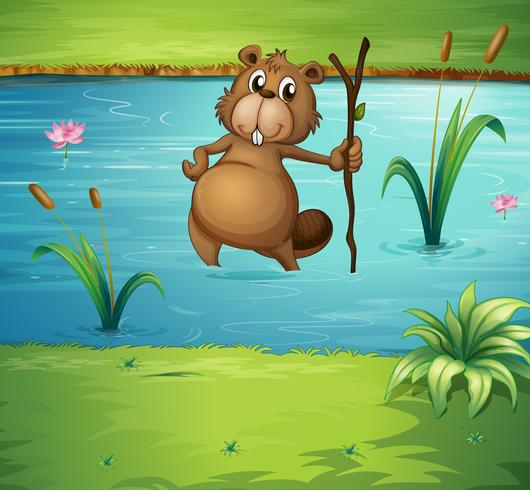Un castor con un bosque en el río.