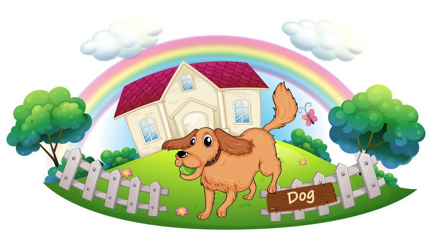 Un chien qui joue devant une maison