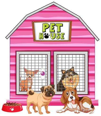 Cães na casa de estimação rosa