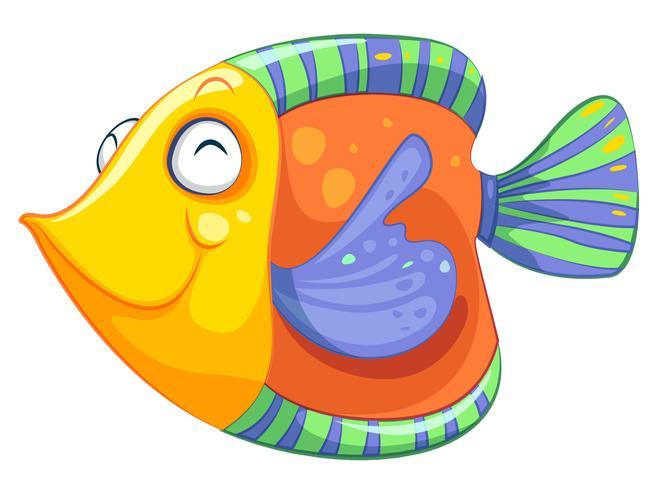 Un pez feliz