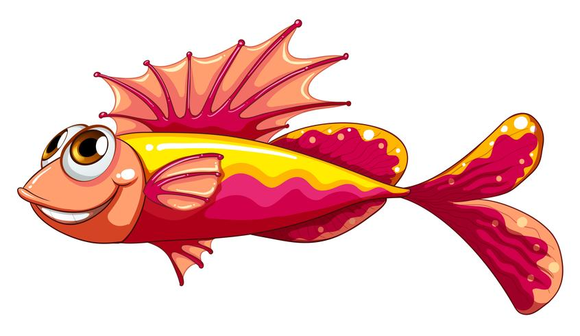 A colorful fish smiling vector