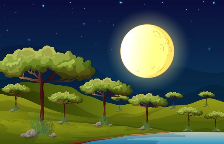 Een heldere volle maan die het bos verlicht