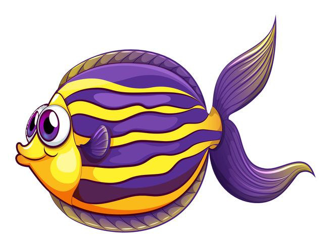 A colorful round fish vector