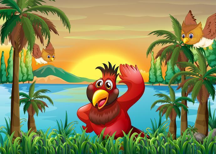 Vögel am Flussufer in der Nähe der Kokospalmen