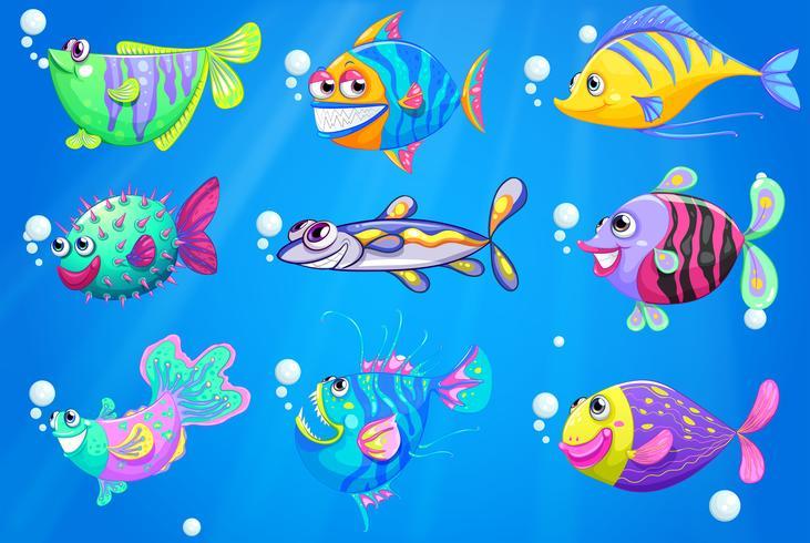 Nio färgglada fiskar under havet vektor