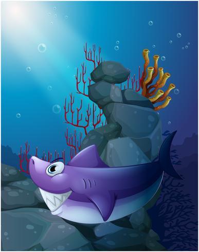 A shark under the sea near the rocks