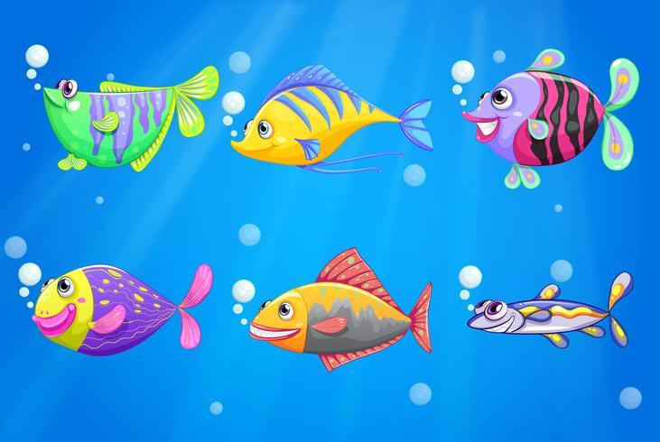 Ein Ozean mit bunten Fischen