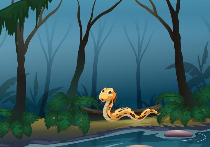 Uma cobra assustadora na floresta perto da lagoa