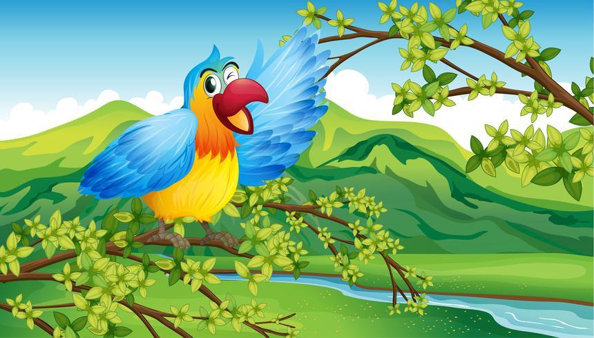En färgstark papegoja på en grön bakgrund
