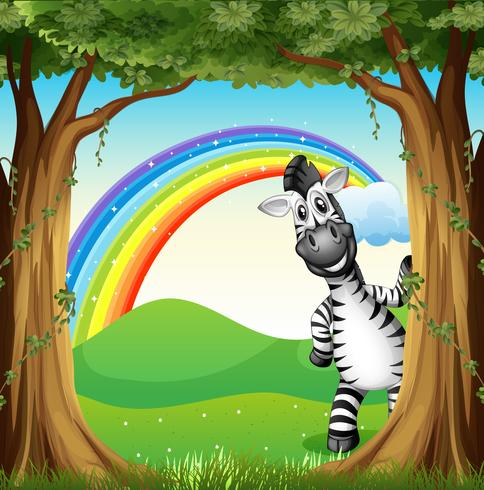 Una cebra cerca de los árboles y un arco iris en el cielo.