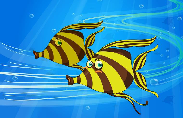 un poisson vecteur
