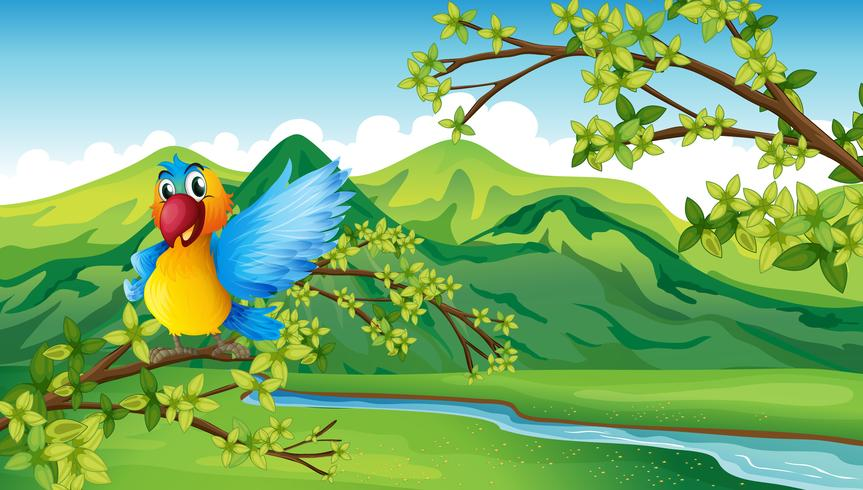 Ein Papagei in der Nähe des Flusses