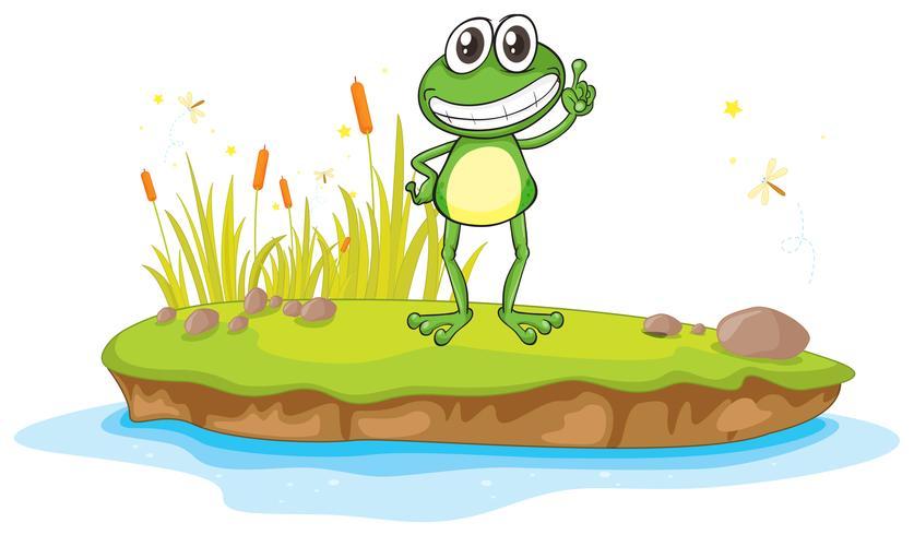une grenouille et une eau