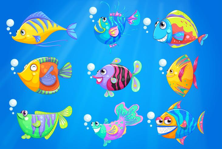 Neuf poissons colorés sous l'océan profond