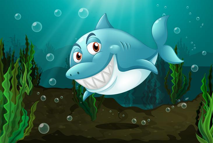 En leende haj
