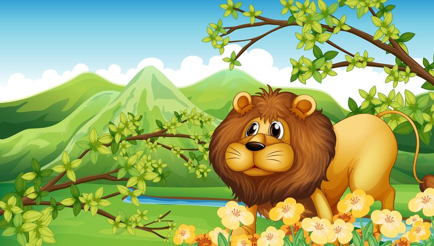 Un león en una zona de montaña verde.