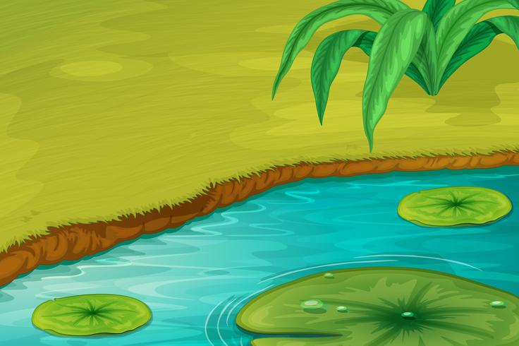 Edge of a pond vector