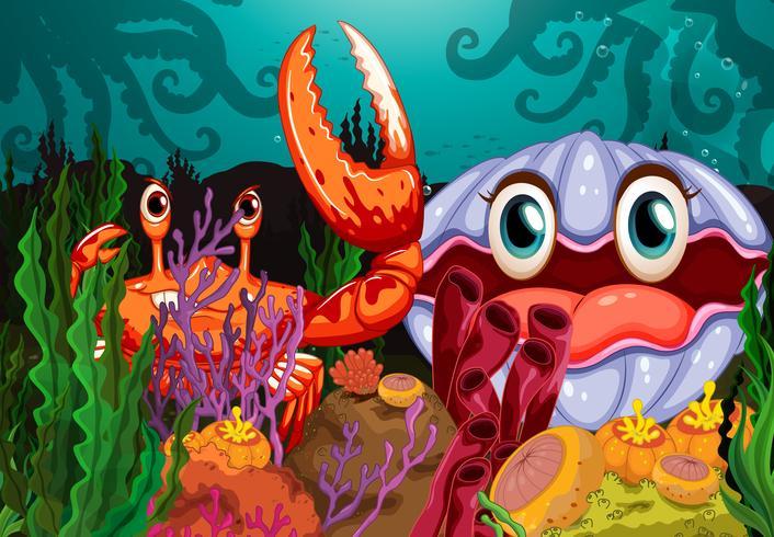 Eine große Krabbe und eine Muschel