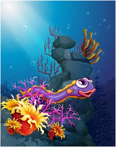 En ål under havet med korallrev
