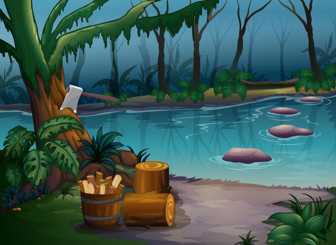 Una foresta misteriosa e un fiume