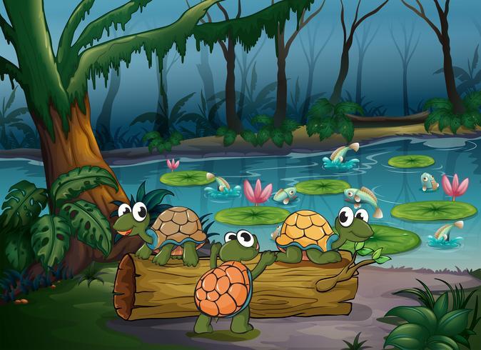 Ein Wald mit Schildkröten und Fischen am Teich