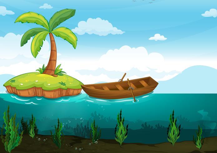 plam árvore e barco a remos