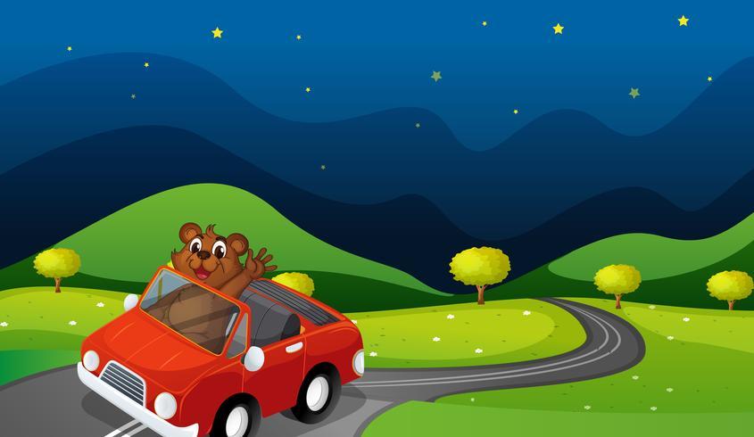 urso e carro