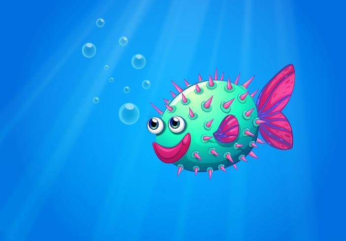 Ein Kugelfisch lächelnd