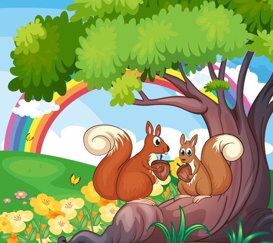 Een boom met eekhoorns