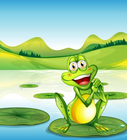 En leende groda ovanför vattenliljan vid dammen