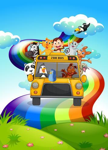 Un bus dello zoo che viaggia attraverso la strada dell'arcobaleno