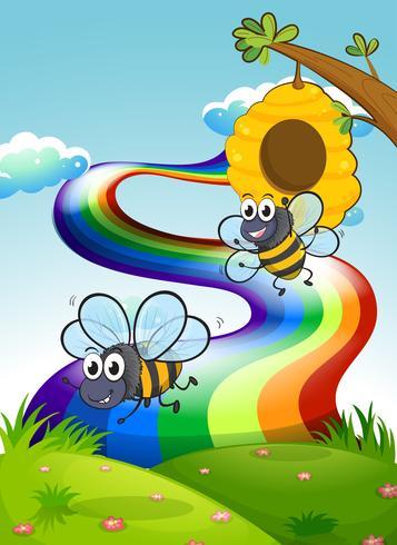 Duas abelhas no topo da colina e um arco-íris no céu