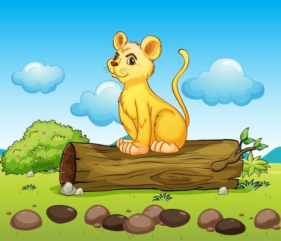 Un pequeño león encima de un tronco.