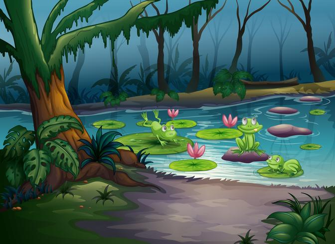 Frogs and a river vector
